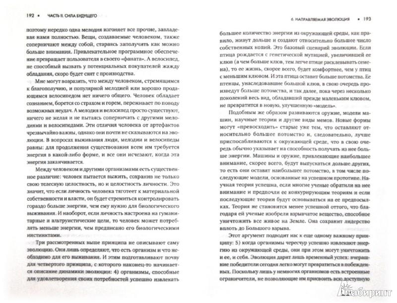 Иллюстрация 1 из 22 для Эволюция личности - Михай Чиксентмихайи | Лабиринт - книги. Источник: Лабиринт