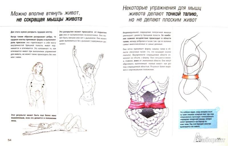 Иллюстрация 1 из 14 для Анатомия упражнений для пресса - Бландин Кале-Жермен | Лабиринт - книги. Источник: Лабиринт