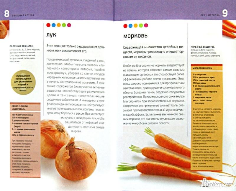 Иллюстрация 1 из 11 для Овощная аптека. Лекарственные свойства овощей | Лабиринт - книги. Источник: Лабиринт