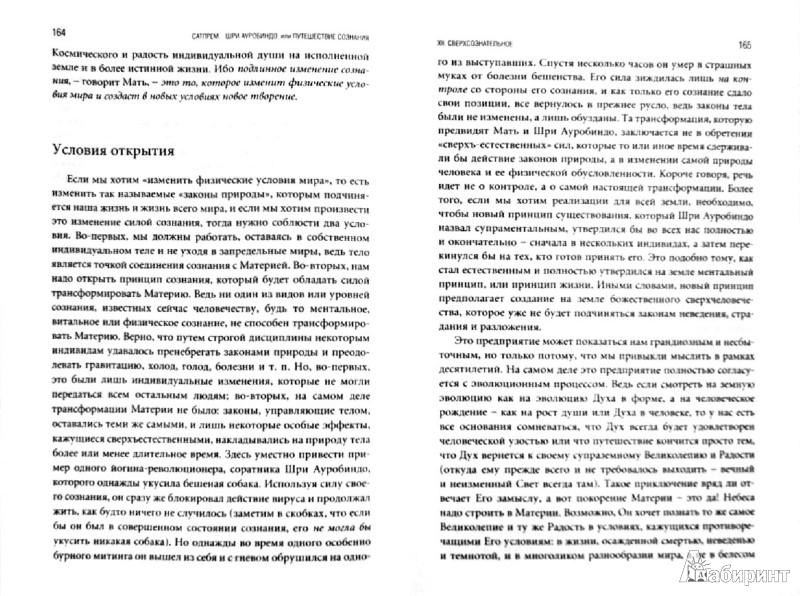 Иллюстрация 1 из 21 для Шри Ауробиндо, или Путешествие сознания - Сатпрем   Лабиринт - книги. Источник: Лабиринт