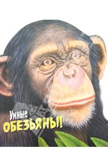 Дикие животные. Умные обезьяны
