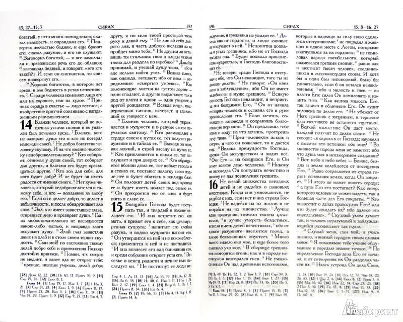 Иллюстрация 1 из 16 для Библия. Книги Священного Писания Ветхого и Нового Завета в русском переводе с параллельными местами | Лабиринт - книги. Источник: Лабиринт