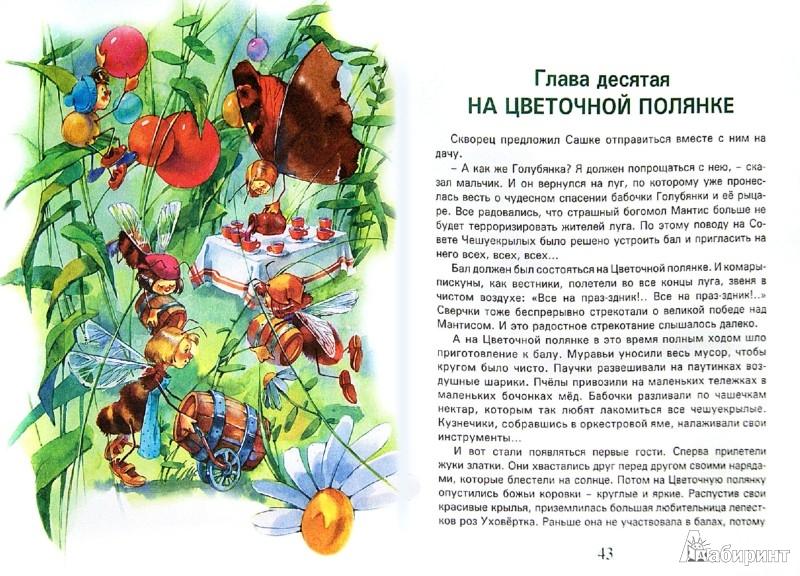 Иллюстрация 1 из 21 для Сказки волшебного луга - Валерий Кастрючин | Лабиринт - книги. Источник: Лабиринт