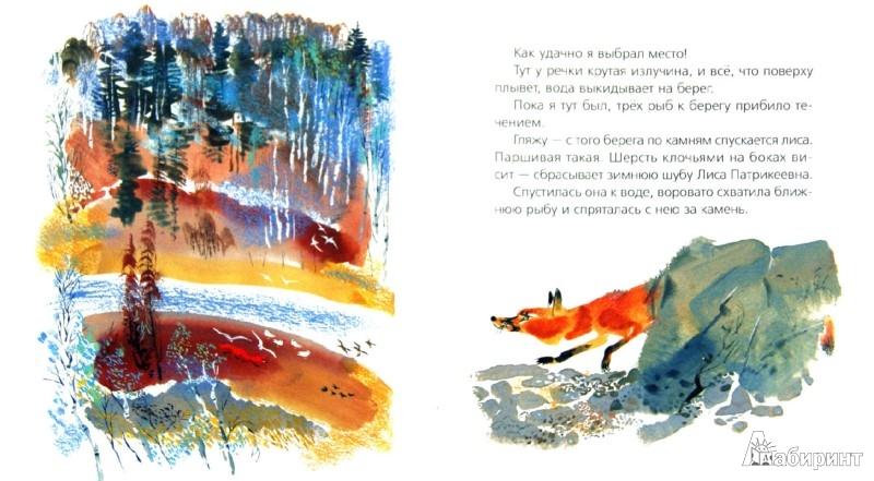 Иллюстрация 1 из 15 для Медведь-рыбак - Евгений Чарушин | Лабиринт - книги. Источник: Лабиринт