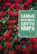 Самые красивые цветы мира: справочник цветовода