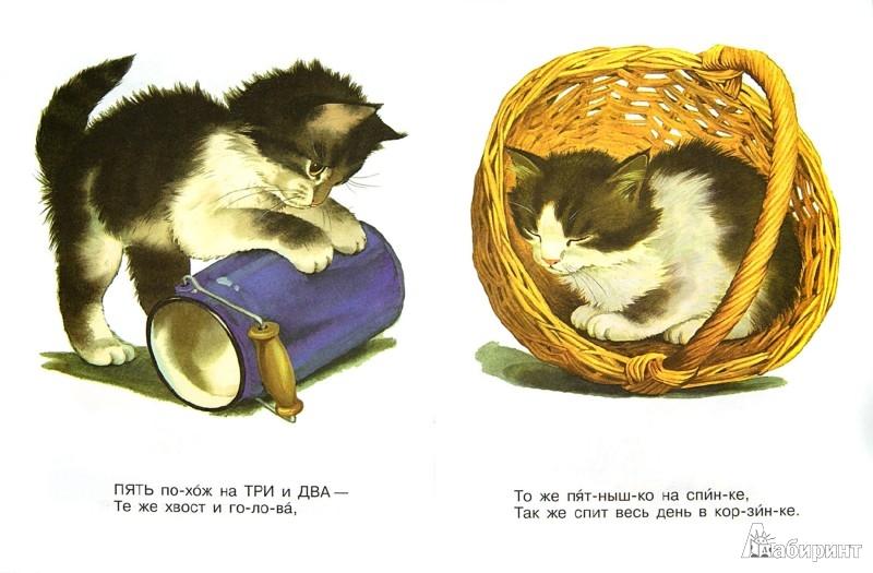 Иллюстрация 1 из 12 для Котята. Считалочка - Сергей Михалков | Лабиринт - книги. Источник: Лабиринт