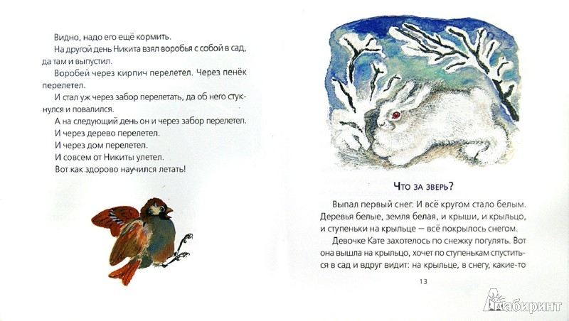 Иллюстрация 1 из 19 для Что за зверь? - Евгений Чарушин | Лабиринт - книги. Источник: Лабиринт