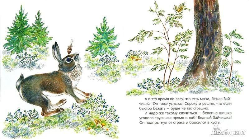 Иллюстрация 1 из 16 для Приключения медвежонка - Наталья Чарушина-Капустина | Лабиринт - книги. Источник: Лабиринт