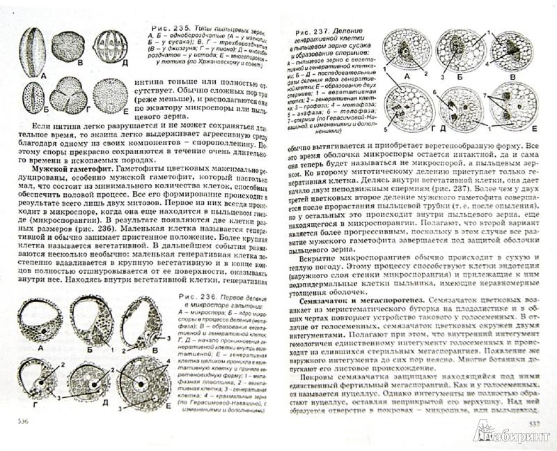 Иллюстрация 1 из 33 для Биология для поступающих в ВУЗы - Билич, Крыжановский | Лабиринт - книги. Источник: Лабиринт