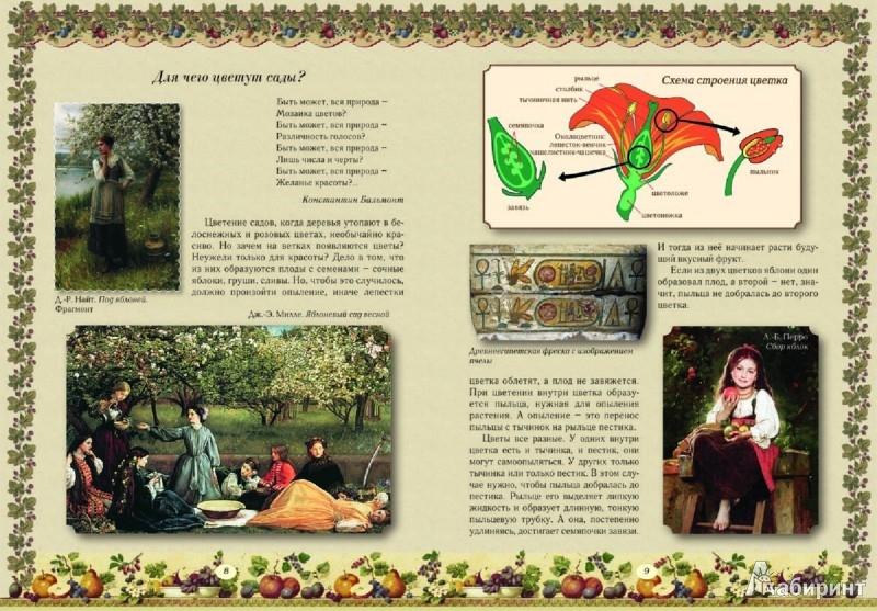 Иллюстрация 1 из 49 для Прогулки по саду - Елена Ракитина | Лабиринт - книги. Источник: Лабиринт