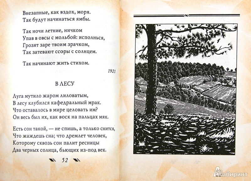 Иллюстрация 1 из 23 для Зеркало - Борис Пастернак | Лабиринт - книги. Источник: Лабиринт