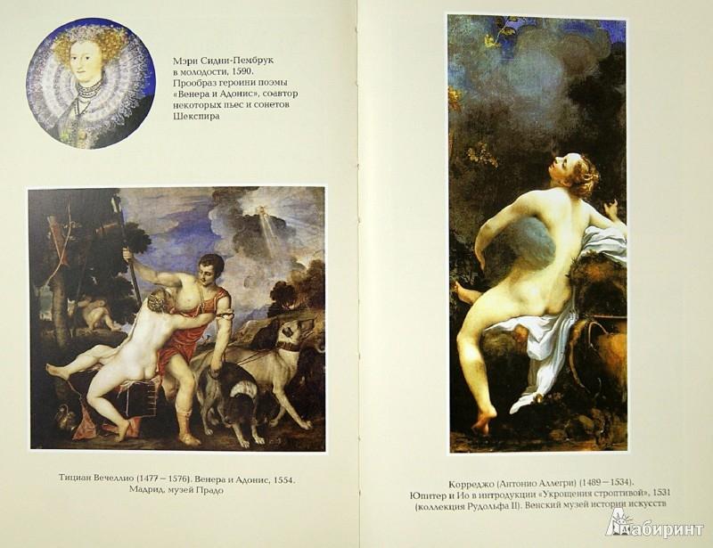 Иллюстрация 1 из 5 для Загадка Шекспира - Михаил Френкель   Лабиринт - книги. Источник: Лабиринт