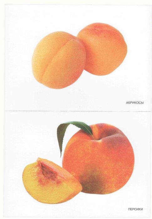 Иллюстрация 1 из 4 для Мир в картинках: Фрукты. Для детей 3-7 лет | Лабиринт - книги. Источник: Лабиринт