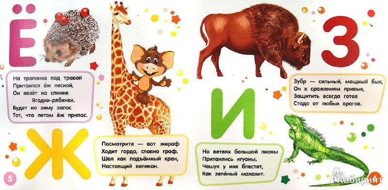 Иллюстрация 1 из 11 для Цедрик и азбука животных - Наташа Гном | Лабиринт - книги. Источник: Лабиринт