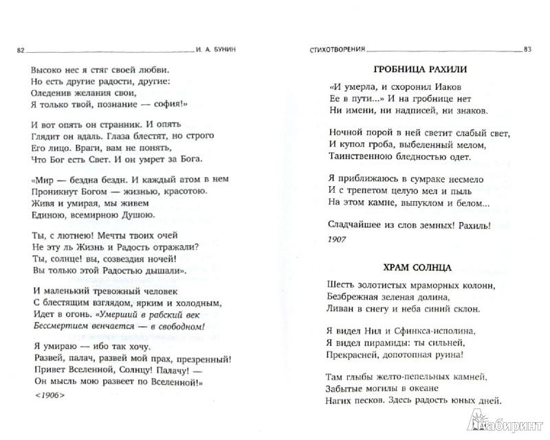 Иллюстрация 1 из 8 для Летняя ночь - Иван Бунин | Лабиринт - книги. Источник: Лабиринт