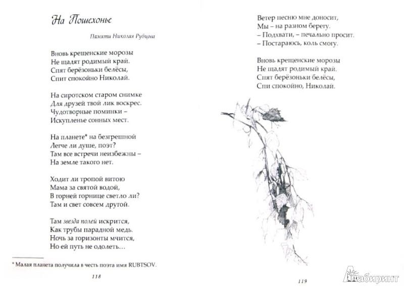 Иллюстрация 1 из 4 для Свет-морошка. Стихи - Чистякова (Мазалецкая) Наталья Дмитриевна | Лабиринт - книги. Источник: Лабиринт