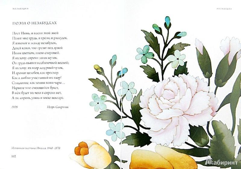 Иллюстрация 1 из 50 для Любовь к ботанике | Лабиринт - книги. Источник: Лабиринт