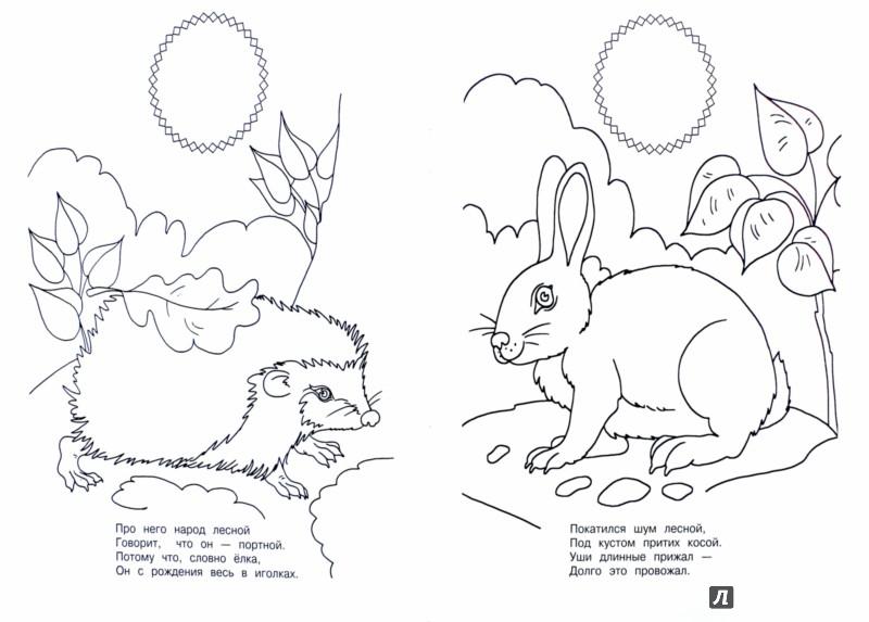 Иллюстрация 1 из 5 для Лесные загадки - Владимир Степанов | Лабиринт - книги. Источник: Лабиринт