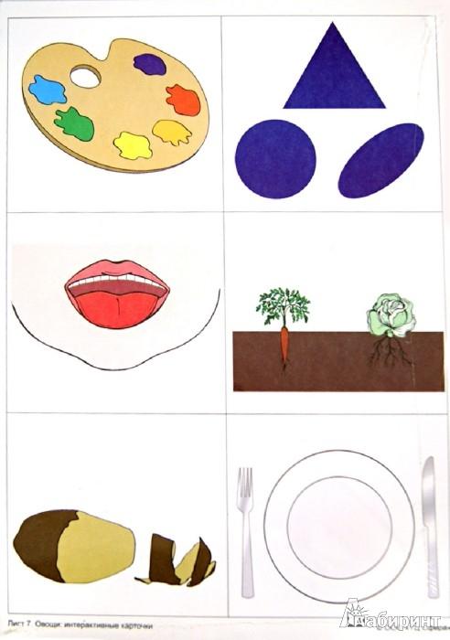 Иллюстрация 1 из 13 для Овощи: демонстрационные интерактивные карточки по развитию речи - Елена Косинова | Лабиринт - книги. Источник: Лабиринт