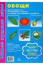 Косинова Елена Михайловна Овощи: демонстрационные интерактивные карточки по развитию речи