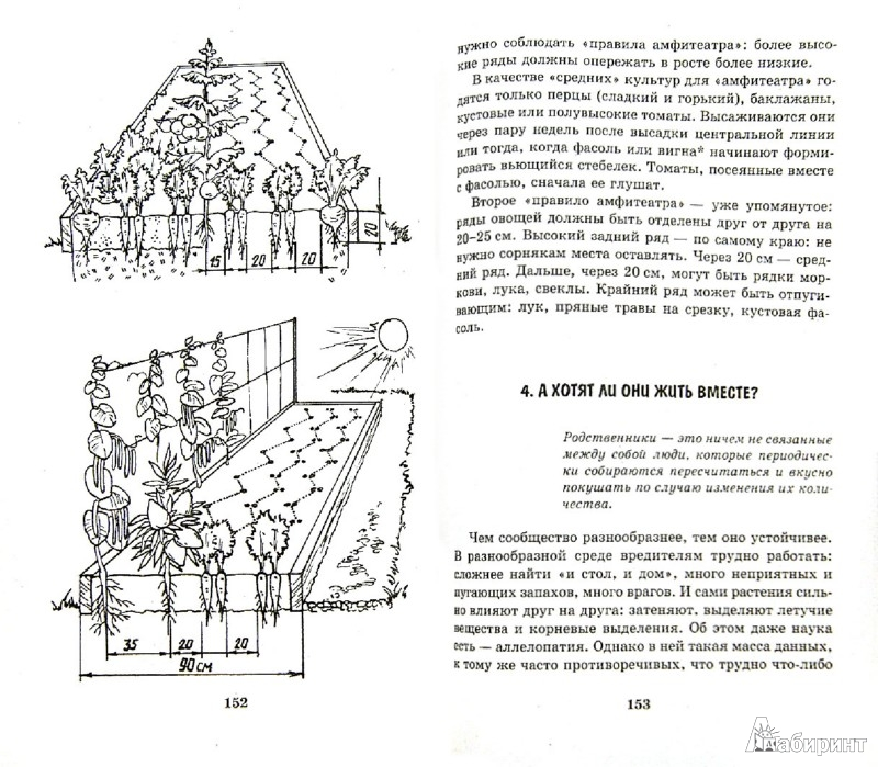 Иллюстрация 1 из 25 для Умный огород в деталях - Николай Курдюмов | Лабиринт - книги. Источник: Лабиринт