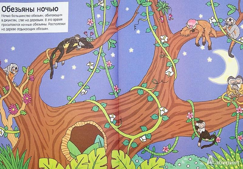 Иллюстрация 1 из 17 для Обезьяны | Лабиринт - книги. Источник: Лабиринт