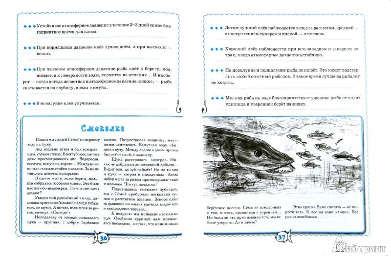 Иллюстрация 1 из 8 для Ловись, рыбка...: справочник юного рыболова - Николай Красильников | Лабиринт - книги. Источник: Лабиринт