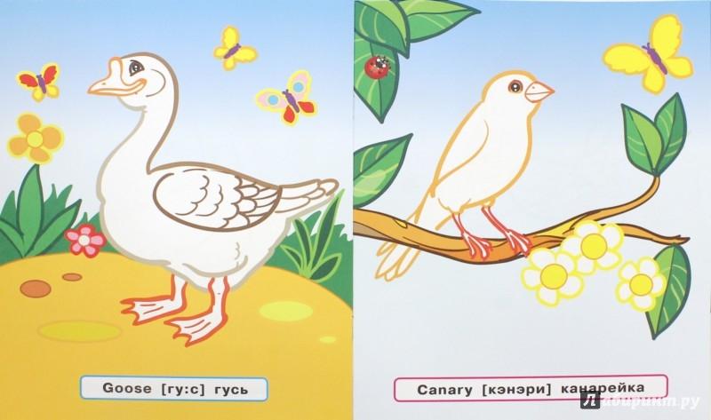 Иллюстрация 1 из 3 для Птицы - Татьяна Ванагель   Лабиринт - книги. Источник: Лабиринт