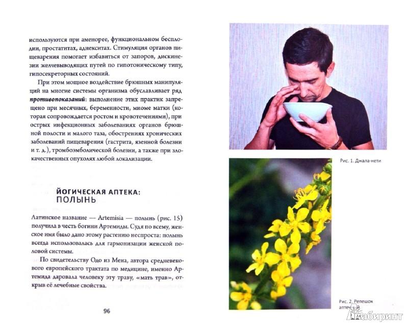 Иллюстрация 1 из 15 для Травы для йогов. Очистительные процедуры хатха-йоги и использование растений… - Артем Фролов   Лабиринт - книги. Источник: Лабиринт