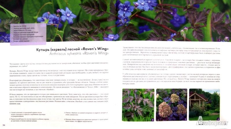 Иллюстрация 1 из 11 для 100 растений для вашего сада - Татьяна Койсман | Лабиринт - книги. Источник: Лабиринт