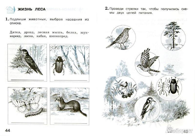 Иллюстрация 1 из 6 для Окружающий мир. Проверим себя. 4 класс. Тетрадь для проверочных работ в 2-х частях. Часть 1. ФГОС - Плешаков, Крючкова | Лабиринт - книги. Источник: Лабиринт
