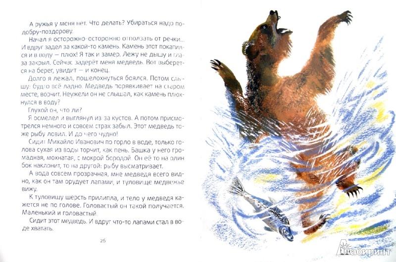 Иллюстрация 1 из 33 для Медведь-рыбак - Евгений Чарушин | Лабиринт - книги. Источник: Лабиринт