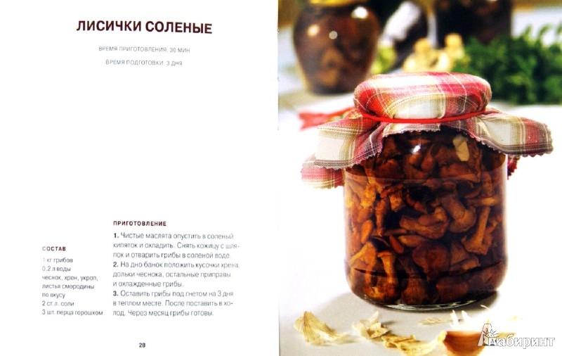 Иллюстрация 1 из 10 для Блюда и консервы. Боровики. Грузди. Опята | Лабиринт - книги. Источник: Лабиринт