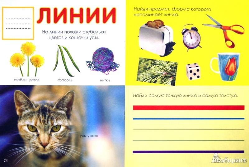 Иллюстрация 1 из 41 для Формы: Свойства. Примеры. Задания | Лабиринт - книги. Источник: Лабиринт