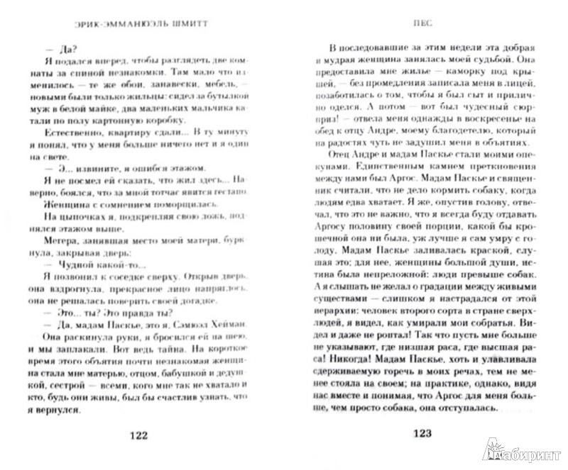 Иллюстрация 1 из 18 для Два господина из Брюсселя - Эрик-Эмманюэль Шмитт | Лабиринт - книги. Источник: Лабиринт