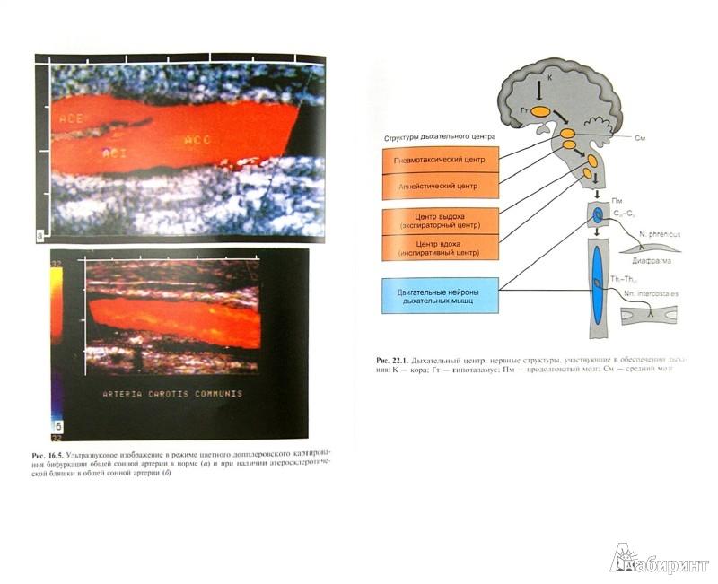 Иллюстрация 1 из 13 для Общая неврология - Никифоров, Гусев   Лабиринт - книги. Источник: Лабиринт