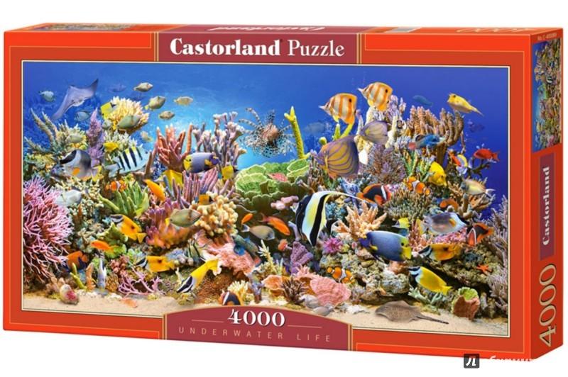 """Иллюстрация 1 из 8 для Puzzle-4000 """"Подводный мир"""" (С-400089)   Лабиринт - игрушки. Источник: Лабиринт"""