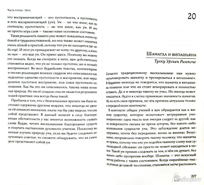 Иллюстрация 1 из 6 для Сущность Дзогчен. Как превратить заблуждение в мудрость - Ургьен Тулку | Лабиринт - книги. Источник: Лабиринт