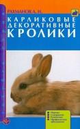 Карликовые декоративные кролики. Породы. Содержание. Разведение. Профилактика заболеваний