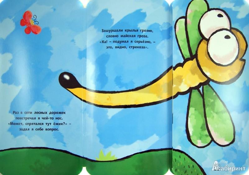 Иллюстрация 1 из 12 для Это ежик? - П. Волцит | Лабиринт - книги. Источник: Лабиринт