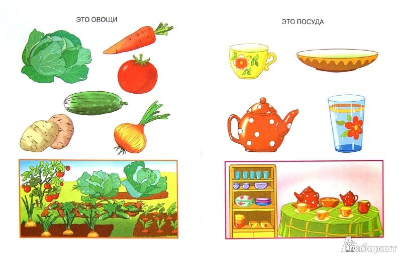 Иллюстрация 1 из 37 для Что нас окружает. Познаем мир. 2-3 года - Ольга Земцова | Лабиринт - книги. Источник: Лабиринт