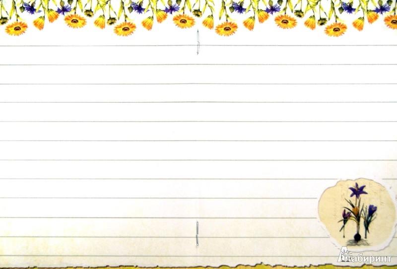 Иллюстрация 1 из 13 для Праздник каждый день! Странички для записочек | Лабиринт - канцтовы. Источник: Лабиринт