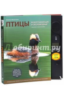 Птицы. Водоплавающие и околоводные. Звуковая энциклопедия (утка)
