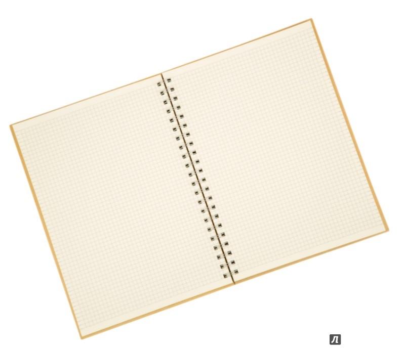 Иллюстрация 1 из 6 для Блокнот на спирали с крафт-обложкой А4 (070197) | Лабиринт - канцтовы. Источник: Лабиринт
