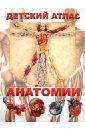 Гуиди Винченцо Детский атлас анатомии