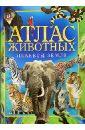 Атлас животных планеты Земля, Анселми Анита