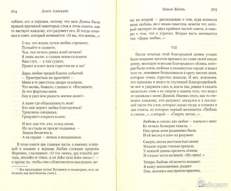 Иллюстрация 1 из 9 для Божественная Комедия. Новая Жизнь - Данте Алигьери   Лабиринт - книги. Источник: Лабиринт