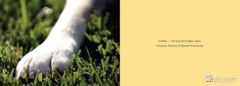 Иллюстрация 1 из 4 для Собаки. Храбрые и верные - Sang Ho | Лабиринт - книги. Источник: Лабиринт