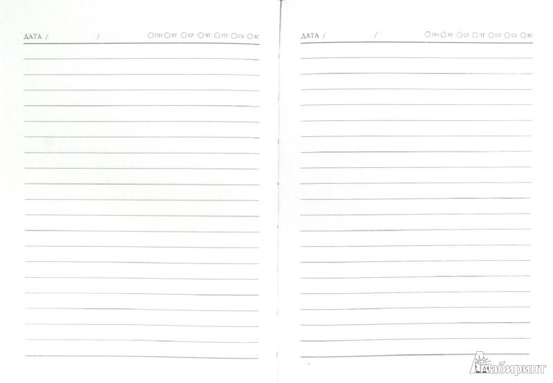 Иллюстрация 1 из 9 для Ежедневник недатированный, А6, 80 листов (30230) | Лабиринт - канцтовы. Источник: Лабиринт