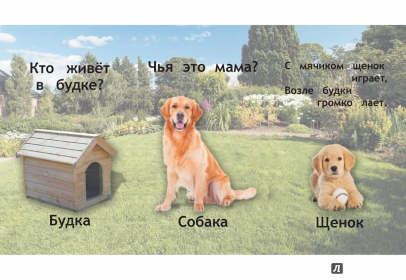 Иллюстрация 1 из 7 для Домашние животные | Лабиринт - книги. Источник: Лабиринт